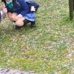 コスプレ|ラブライブで桜撮影!